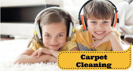 carpet cleaning fredericksburg va and stafford va