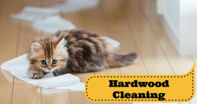 hardwood cleaning and refinishing fredericksburg stafford va