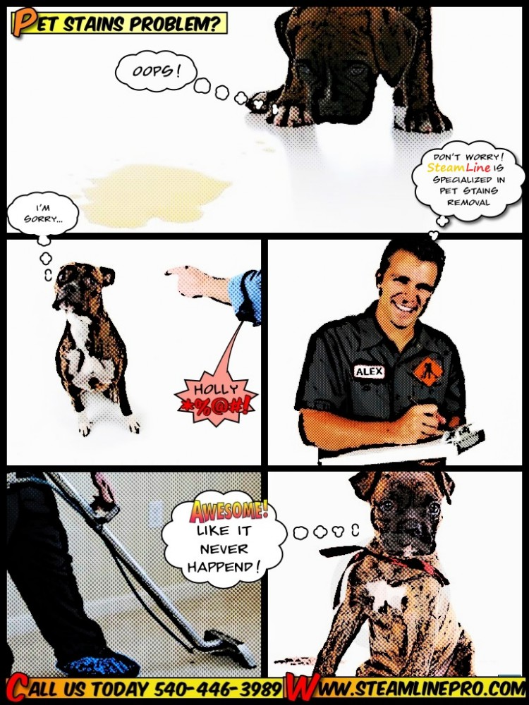 SteamLine carpet cleaning comics pet stains and odor removing Stafford VA and Fredericksburg VA