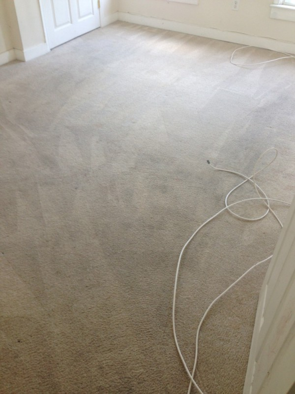 Carpet cleaning, deep scrubbing and sanitizing in Fredericksburg VA