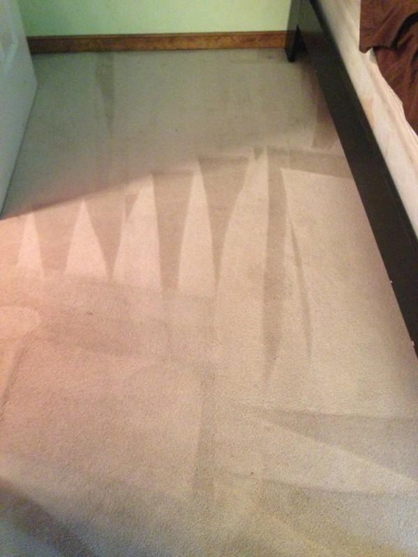 Whole house deep floor cleaning and deodorizing in Spotsylvania VA and Fredericksburg VA
