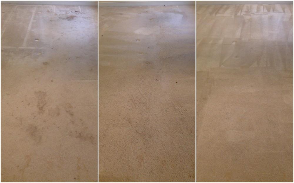recent carpet cleaning job in Fredericksburg VA. We are the best