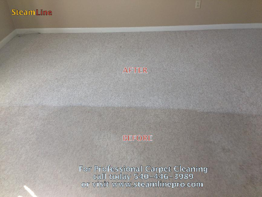 professional carpet cleaning service in Fredericksburg VA and Stafford VA area