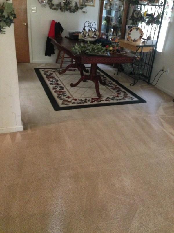 Deep steam carpet cleaning and Scotchgard protection in Aquia Stafford VA and Fredericksburg VA