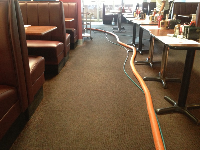 Commercial carpet cleaning and Scotchgard protection in Fredericksburg VA and Stafford VA