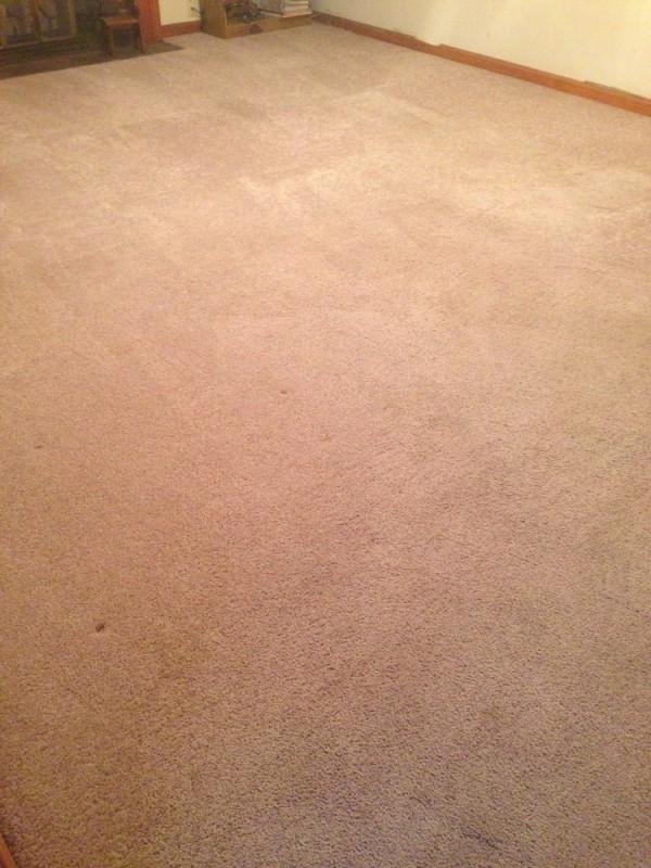 deep steam carpet cleaning Stafford VA and Fredericksburg VA