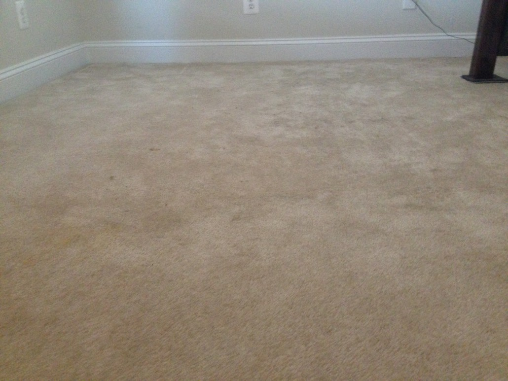best carpet stretching in and stafford area best carpet repair