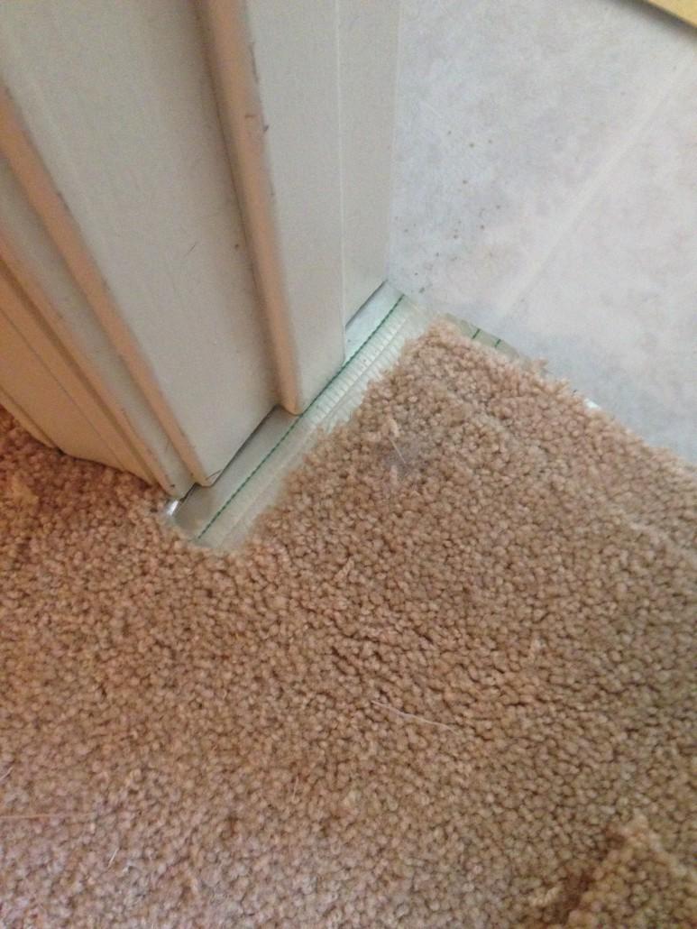Carpet Repair Pet Damages And Seam Repair