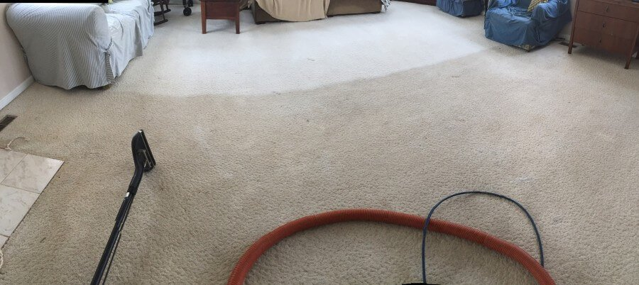 best green carpet cleaning, kins and pet safe. Fredericksburg VA